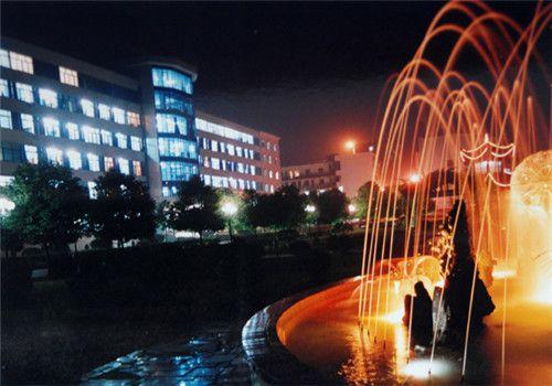 通城县人民医院体检中心夜景