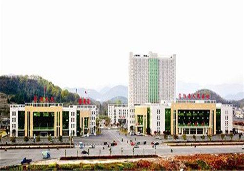 崇阳县人民医院体检中心大楼
