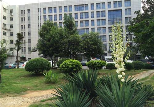 南京市第一医院体检中心医院一角