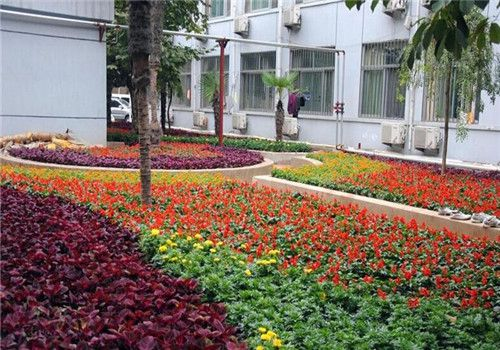 江苏省人民医院技术支持医院体检中心周围环境