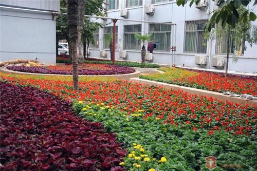 徐州市铜山区人民医院体检中心绿化环境