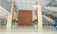 沈阳市第四人民医院体检中心大厅